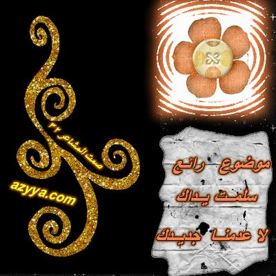 رد: سواريهات عبد محفوظ ووليد عطاالله2009 مدهشة