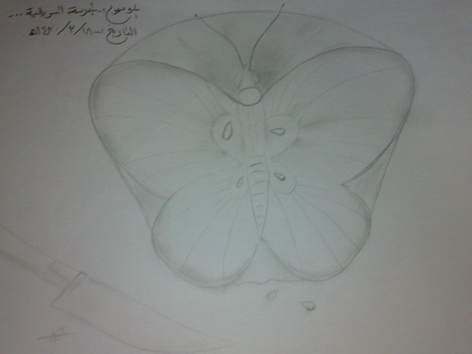 رسمة رسمتها وابغا اشوف رايكم بكل صراحة هذي الرسمة الاصلية