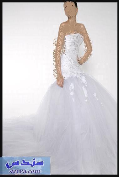 فساتين العروس2013- فساتين العروس الجديدة 2013فساتين العروس النعومه 2013- تصميمات