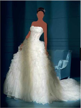 فساتين عروس للمصمم طوني وردفساتين زفاف للسمينات موديلات جديدة 2013فساتين