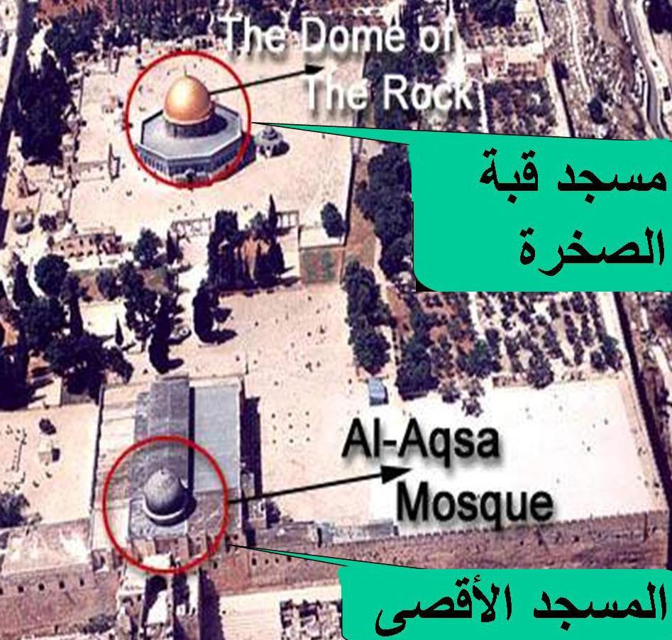 التهديد الأكبر على المسجد يكمن في جهل الكثير من المسلمين،