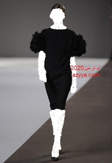 ايلي صعب 2013فساتين جديدة منوعة من تصميم ايلي صعبفساتين جديدة