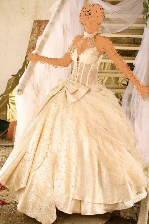 جزائرية الخاصة بالعروس،أشهر الالبسة التقليدية الجزائريةفساتين زفاف بأكمام طويلة جديده