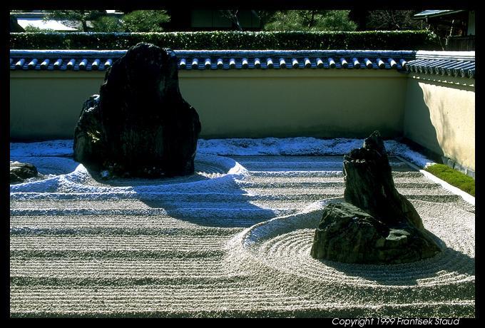 في أوكيناوا باليابان من أغرب المطاعم في العالم Okinawa Tree