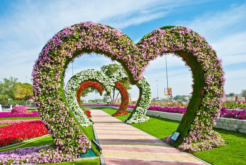 الزهور المعلقة عالمياً بارتفاع 6 أمتار وعلى 50 هرماً من