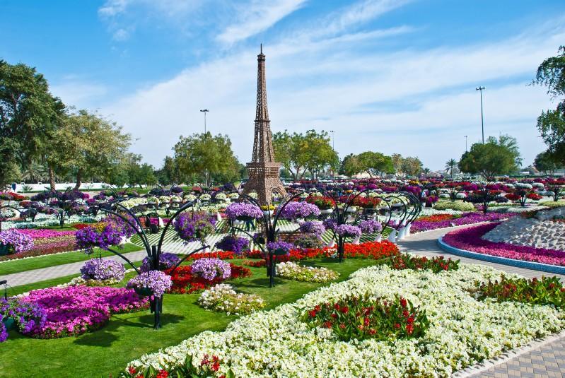 الزهور بألوان وأنواع مختلفة. كما أن الحديقة الفريدة من نوعها