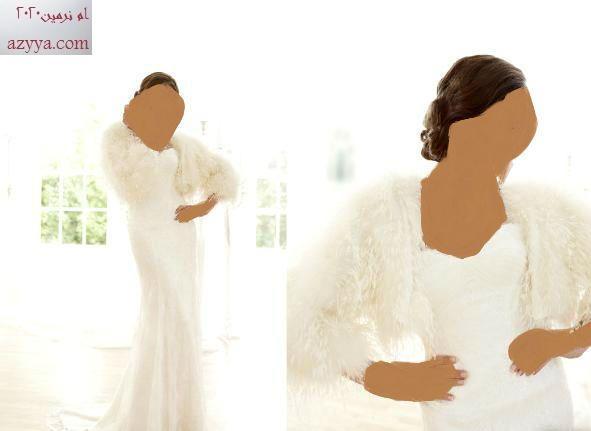 زفاف حصريا: ساسي هولفورد ... 2012 (فساتين زفاف)