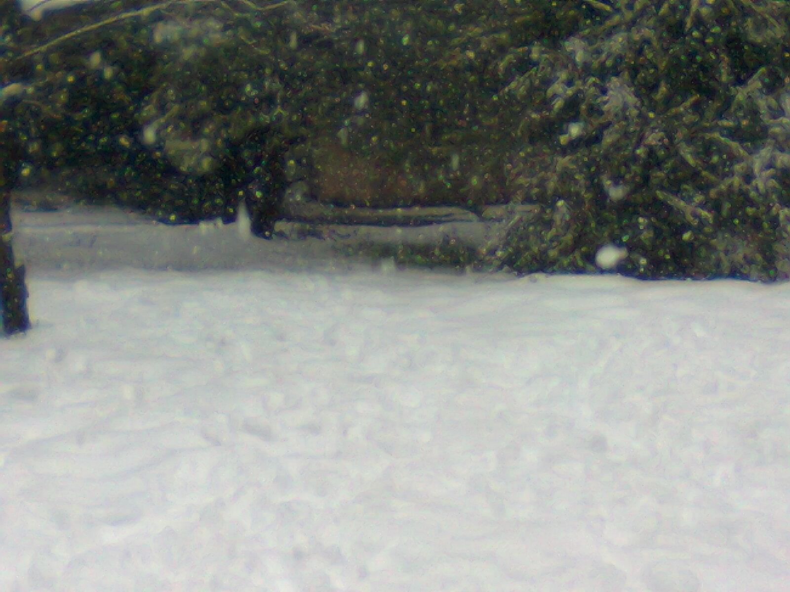 وكمان ميتى (العوده للمدرسة)من تصويري الثلج و آلرعد الأردنفكرة سهلة