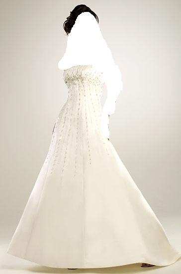 Awardsمجموعة فساتين زفاف إيلي صعب Pronovias لعام 2013اجمل فساتين السهرة