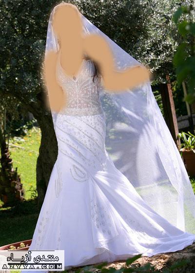 زفافك مع فساتين ذوقفساتين الزفاف لـ ريم اكرا- شتاء 2013فساتين