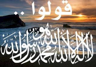عثمان بن عفان بن أبي العاص بن أميّة القرشي ،