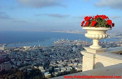 فلسطينفلسطين تبكي الا تشعرونذكاء فلسطيني....... وغباء إسرائيليإن كنت كذلك فأنت