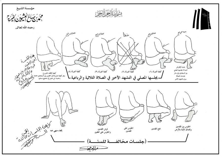 توضيحية ] طريقة الجلوس ووضع اليدين والقدمين في الصلاة للعلامة