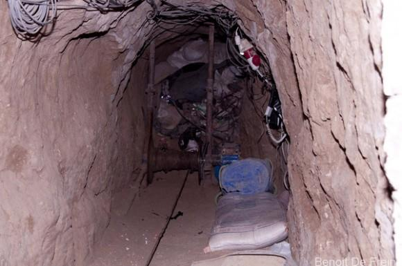 التي تم حفرها من قبل أهلنا في غزة . و