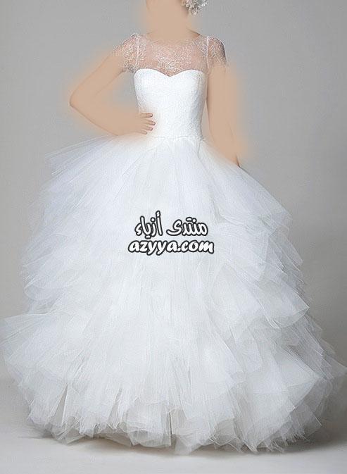 2012_2013 للمصممه عائشة المهيريمجموعة فساتين زفاف إيلي صعب Pronovias لعام