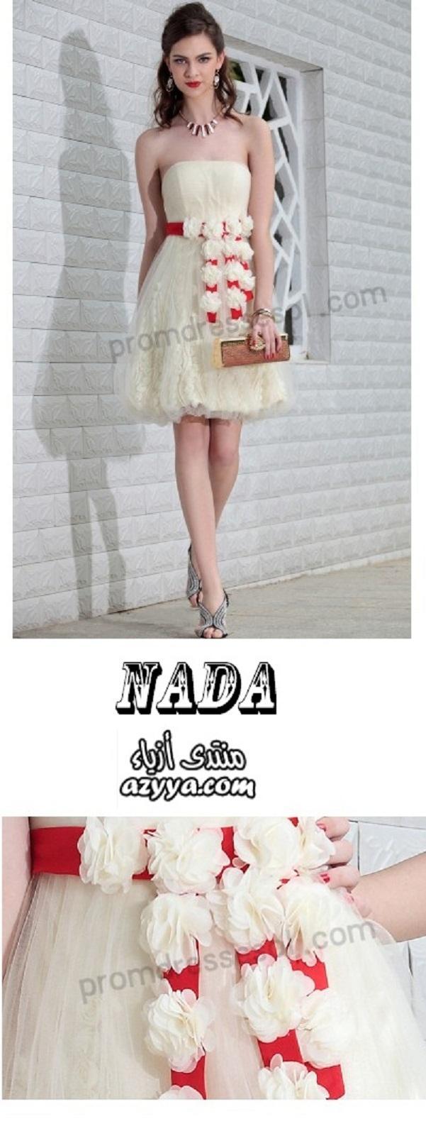 وDolce & Gabbana وMissoni