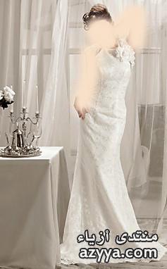 الاحلامفساتين زفاف فرنسيةأشيك فساتين زفاففساتين زفاف صيف 2014 من bertaأحلى