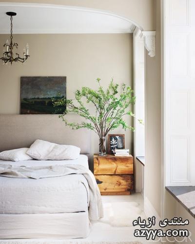 في الديكور 2زيني بيتك بالنباتاتجمالية الأخضر في الديكورالعناصر الجمالية والصحية