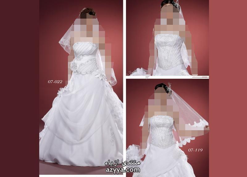 لـ (ريم اكرا) لشتاء 2013مجموعة فساتين زفاف إيلي صعب Pronovias