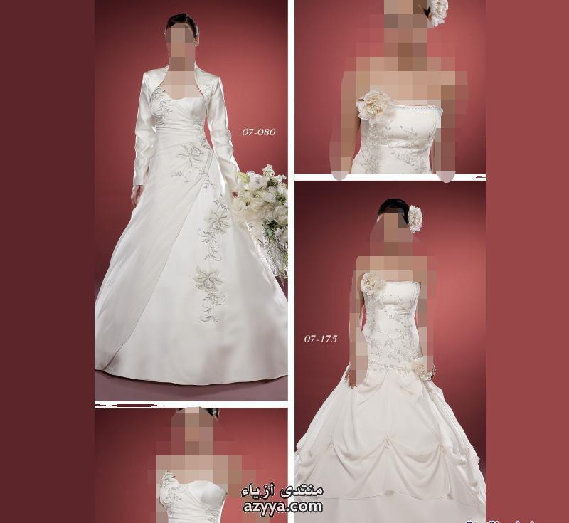 الشهيرة فيرا وانغ 2فساتين زفاف رقيقة جدا لطونى باولز 2013فساتين