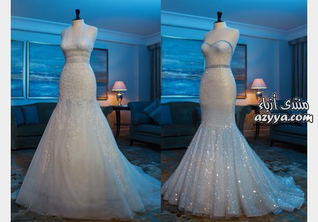 زفاف صيف 2014 من bertaأجمل وأرقى فساتين زفافأحلى فساتين زفافصور