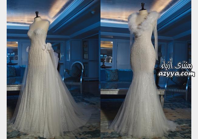 عرضها بدبيفساتين زفاف جمالها من الآخرفساتين زفاف ولا في الاحلامفساتين