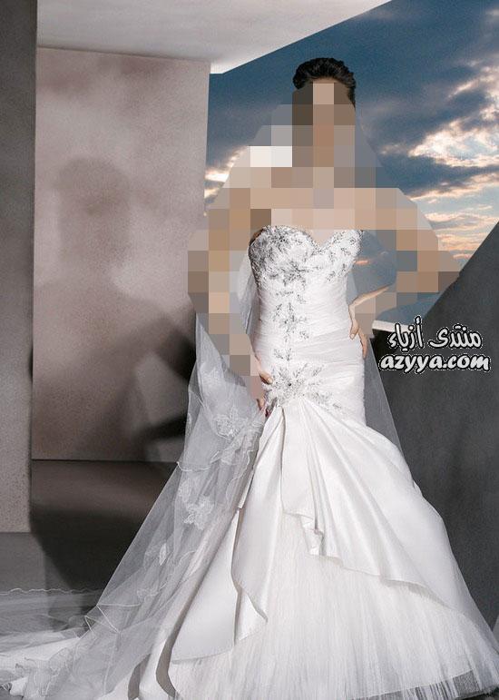 زفاف رامى سلمون ... شياكة تفوق الوصففساتين طويلة من تجميعيفساتين
