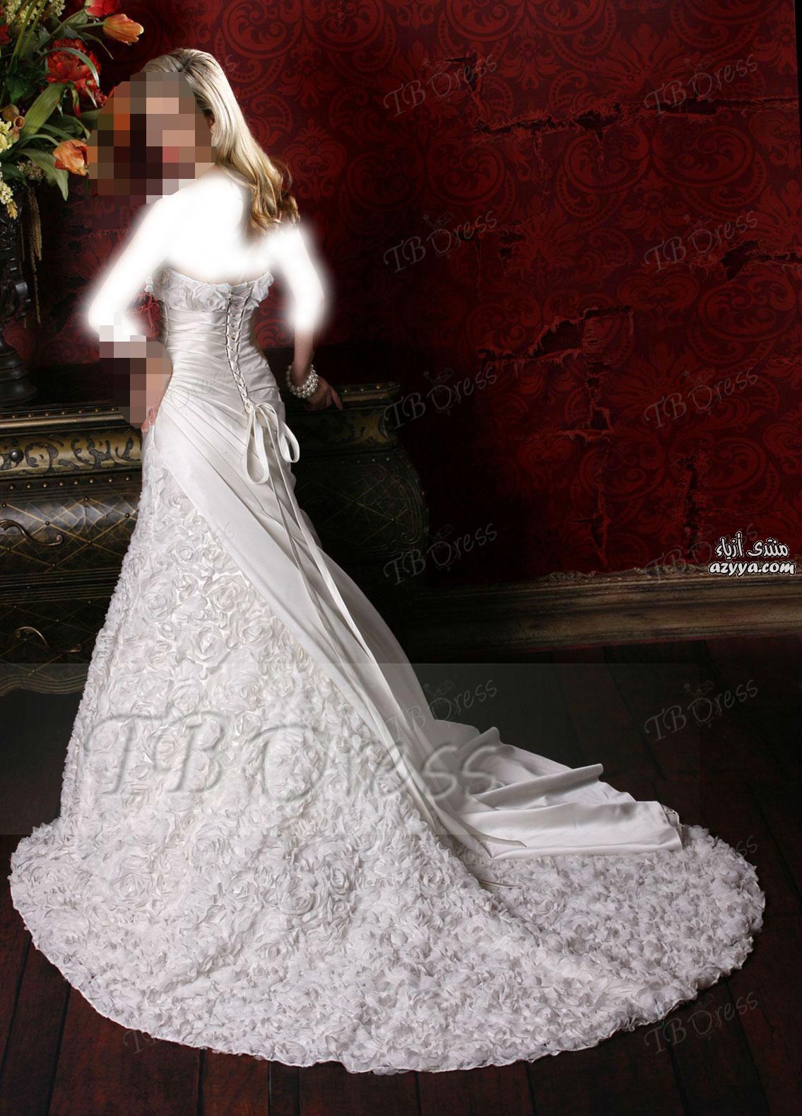 طويلة للعروس