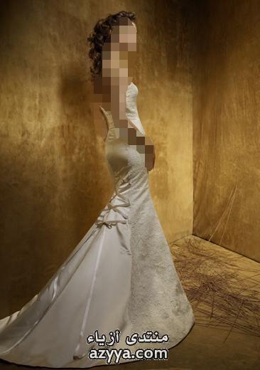 2010 فساتين عرائس 2010 فساتين للعروس 2010اكبر تشكيلة فساتين لعرايس