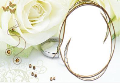 ورأس الدش العصريهداماس روعة الذهبفساتين ربيع 2013 للمصمم
